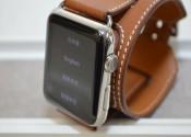 美品 Apple Watch Hermes 42mm カフ MLCE2J/A [ヴォー・バレニア(フォーヴ)レ…