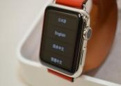 Apple Watch Hermes Series 38mm ドゥブルトゥール ステンレスxヴォー・スウィフト…